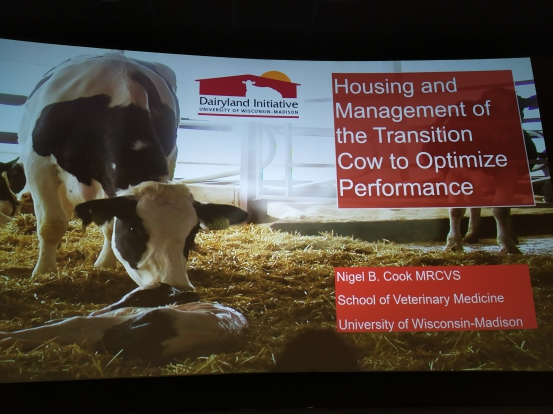 Transition cow presentation seminarium Finland